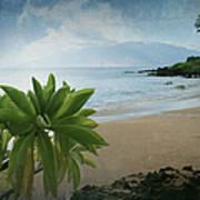 Ka Makani Olu Olu  -  Polo Beach Maui Hawaii Art Print