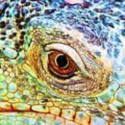 Kaleidescope Eye Art Print