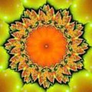 Kaleidoscope IIi Art Print