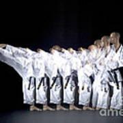 Karate Expert Art Print