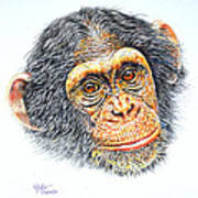 Kiko Art Print