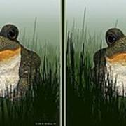 King Frog - Gently Cross Your Eyes And Focus On The Middle Image Art Print