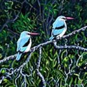 Woodland Kingfisher Art Print
