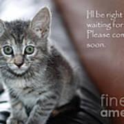 Kitten Greeting Card Art Print by Micah May
