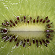 Kiwi Fruit Reflected On Glass Print by Mark Duffy
