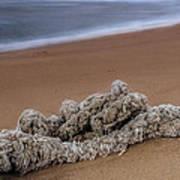 Knots On The Sand Art Print