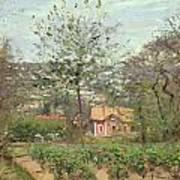 La Maison Rose Print by Camille Pissarro