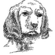Labrador-portrait-drawing Art Print
