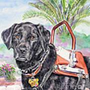 Labrador Retriever Service Dog Art Print