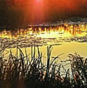 Lacassine Sundown Art Print