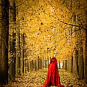 Lady In Red - 5 Art Print by Okan YILMAZ