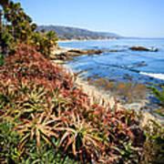 Laguna Beach Coastline Photo Art Print