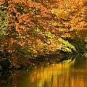 Lake And Forest In Autumn Art Print