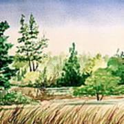 Lake County Landscape Art Print