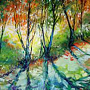 Lake Forest Hills Art Print