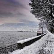 Lake Front In Winter Art Print