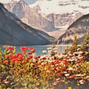 Lake Louise Alberta Art Print