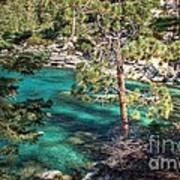 Lake Tahoe Swimming Hole Art Print