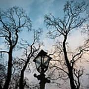 Lantern Art Print