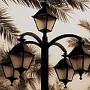 Lanterns And Fronds Art Print