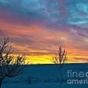 Larimer County Winter Sunrise Print by Harry Strharsky
