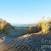 Late Afternoon Light Waikuku Beach Art Print