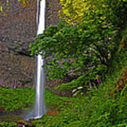 Latourell Falls Oregon - Posterized Art Print