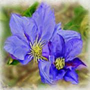 Lavendar Blue Art Print