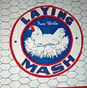 Laying Mash Art Print