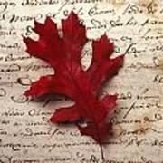 Leaf On Letter Art Print
