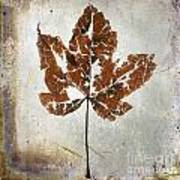 Leaf  With Textured Effect Art Print