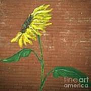 Leavenworth Sunflower  Art Print