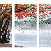 Leaves Of Red Art Print by Darren Fisher