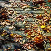 Leaves On The Boardwalk Art Print