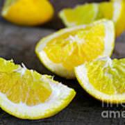 Lemon Quarters Art Print
