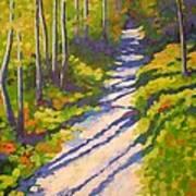 Lena Lake Trail 3 Art Print