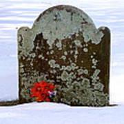 Lichen Tombstone Art Print