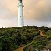 Lighthouse Path Art Print