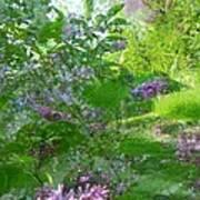 Lilac In The Air Art Print