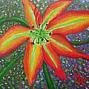 Lily In My Garden Art Print