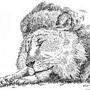 Lion-art-black-white Art Print