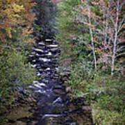 Little River - North Carolina Autumn Scene Art Print