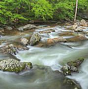Little River Rapids Art Print
