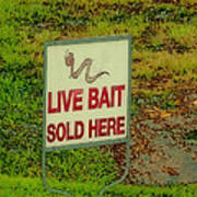 Live Bait Sign Art Print