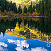 Lizard Lake Reflections Art Print