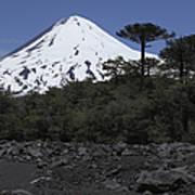 Llaima Volcano, Araucania Region, Chile Art Print