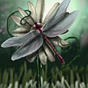 Ll's Dragonfly Art Print