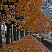 Locarno In Autumn Art Print