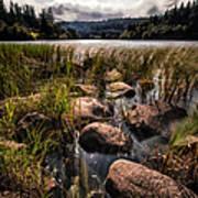 Loch Ard From The Reed Beds Print by John Farnan