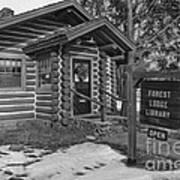 Log Cabin Library 11 Art Print